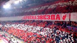 crvena-zvezda-kk